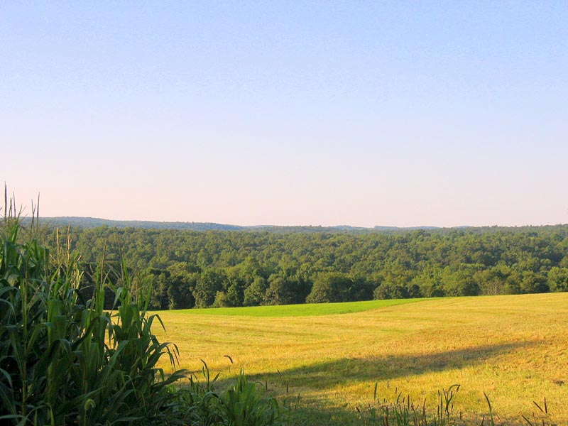 Beautiful Hilltop view